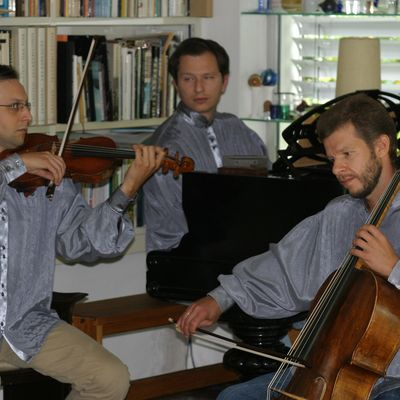 Yury Martynov official Website | Playel trio